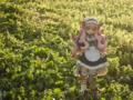[フィギュア][ALTER][ゼロの使い魔][花][*Season01:春]ルイズ ゴスパンクVer. カットNo.019