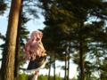 [フィギュア][ALTER][ゼロの使い魔][森林][*Season01:春]ルイズ ゴスパンクVer. カットNo.012