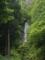 森の奥の滝