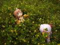 [フィギュア][GoodSmileCompany][ねんどろいど][斬魔大聖デモンベイン][シャイニングウィンド][花]ねんどろいど アル・アジフ&ねんどろいど クレハ カットNo.036