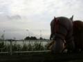 [フィギュア][GoodSmileCompany][ねんどろいど][斬魔大聖デモンベイン][シャイニングウィンド]ねんどろいど アル・アジフ&ねんどろいど クレハ カットNo.035