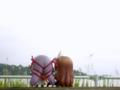 [フィギュア][GoodSmileCompany][ねんどろいど][斬魔大聖デモンベイン][シャイニングウィンド]ねんどろいど アル・アジフ&ねんどろいど クレハ カットNo.034