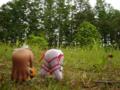 [フィギュア][GoodSmileCompany][ねんどろいど][斬魔大聖デモンベイン][シャイニングウィンド]ねんどろいど アル・アジフ&ねんどろいど クレハ カットNo.012
