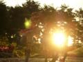 [フィギュア][MAXFACTORY][涼宮ハルヒの憂鬱]涼宮ハルヒ&朝比奈みくる&長門有希 カットNo.005