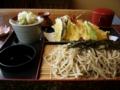 [食事][蕎麦]天ぷらそば (長野県安曇野市豊科町 一葉にて)