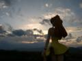 [フィギュア][トイズワークス][メディアワークス][エヴァンゲリオン][空][夕焼け]電撃フィギュアマガジン 惣流・アスカ・ラングレー カットNo.029