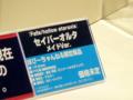 [フィギュア][WonderFestival][WF2009夏][ALTER][Fate/stay night]アルター セイバーオルタ メイドVer. カットNo.001