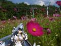 [フィギュア][ALTER][XENOSAGA]『Xenosaga EpisodeIII』 KOS-MOS Ver.4 カットNo.028