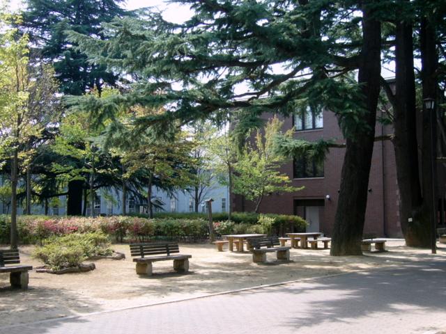 長野県松本市あがたの森公園 カットNo.004