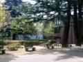 [風景・景観]長野県松本市あがたの森公園 カットNo.004