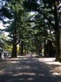 [風景・景観]長野県松本市あがたの森公園 カットNo.001