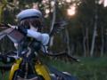 [フィギュア][VOLKS][リリカルなのは]ボークス モエコレプラス 八神はやて カットNo.010