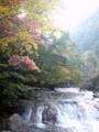 [風景・景観][滝][紅葉]横谷渓谷(長野県茅野市)