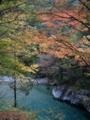 [風景・景観][森林][紅葉][河川]紅葉の渓谷