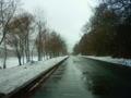 [風景・景観][雪]ひとりごと