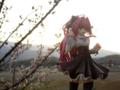 [フィギュア][オーキッドシード][神曲奏界ポリフォニカ][*Season01:春]コーティカルテ・アパ・ラグランジェス カットNo.005