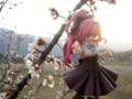 [フィギュア][オーキッドシード][神曲奏界ポリフォニカ][*Season01:春]コーティカルテ・アパ・ラグランジェス カットNo.00[フィギュア][オーキ