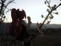[フィギュア][オーキッドシード][神曲奏界ポリフォニカ][*Season01:春]コーティカルテ・アパ・ラグランジェス カットNo.002