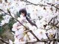 [フィギュア][メガハウス][ガンダム][機動新世紀ガンダムX][*Season01:春]メガハウス エクセレントモデル RAHDX ティファ・アディール カットNo.020