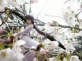 [フィギュア][メガハウス][ガンダム][機動新世紀ガンダムX][*Season01:春]メガハウス エクセレントモデル RAHDX ティファ・アディール カットNo.001