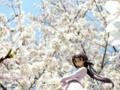 [フィギュア][メガハウス][ガンダム][機動新世紀ガンダムX][*Season01:春]メガハウス エクセレントモデル RAHDX ティファ・アディール カットNo.012