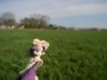 [フィギュア][トイズワークス][スーパーロボット大戦][*Season01:春]トイズワークス ラトゥーニ・スゥボータ カットNo.043