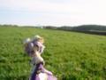 [フィギュア][トイズワークス][スーパーロボット大戦][*Season01:春]トイズワークス ラトゥーニ・スゥボータ カットNo.042