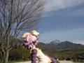 [フィギュア][トイズワークス][スーパーロボット大戦][*Season01:春]トイズワークス ラトゥーニ・スゥボータ カットNo.033