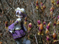 [フィギュア][トイズワークス][スーパーロボット大戦][*Season01:春]トイズワークス ラトゥーニ・スゥボータ カットNo.020