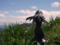 コトブキヤ 空の境界 黒桐鮮花 カットNo.024