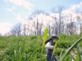 [フィギュア][コトブキヤ][TYPE-MOON][空の境界][*Season01:春]コトブキヤ 空の境界 黒桐鮮花 カットNo.022