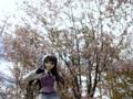 [フィギュア][コトブキヤ][TYPE-MOON][空の境界][*Season01:春]コトブキヤ 空の境界 黒桐鮮花 カットNo.013