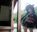 [フィギュア][GoodSmileCompany][ペンギン娘はぁと][*Season02:夏]南極さくら ゴスロリ浴衣Ver. カットNo.006