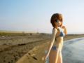 [フィギュア][WAVE][リリカルなのは][*Season02:夏]BEACH QUEENS 八神はやて カットNo.019