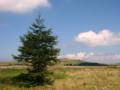 [風景・景観][空][草原]長野県・美ヶ原高原