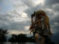 [フィギュア][メガハウス][リトルバスターズ!][*Season03:秋]メガハウス リトルバスターズ!EX 朱鷺戸沙耶 カットNo.005