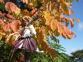 [フィギュア][ムービック][コトブキヤ][けいおん!][*Season03:秋]ムービック/コトブキヤ 平沢唯 カットNo.005
