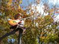 [フィギュア][ムービック][コトブキヤ][けいおん!][*Season03:秋]ムービック/コトブキヤ 平沢唯 カットNo.039