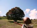 [フィギュア][ムービック][コトブキヤ][けいおん!][*Season03:秋]ムービック/コトブキヤ 平沢唯 カットNo.034