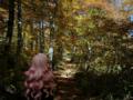 [フィギュア][*Season03:秋][ALTER][ゼロの使い魔]アルター ルイズ ゴスパンクVer. カットNo.015