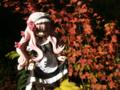 [フィギュア][*Season03:秋][ALTER][ゼロの使い魔]アルター ルイズ ゴスパンクVer. カットNo.006