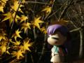 [フィギュア][GoodSmileCompany][ねんどろいど][Fate/stay night][*Season03:秋]ねんどろいど 間桐桜 カットNo.003