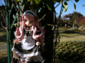 [フィギュア][*Season03:秋][ALTER][ゼロの使い魔]ルイズ ゴスパンクVer. カットNo.001