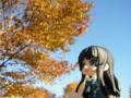 [フィギュア][*Season03:秋][GoodSmileCompany][ねんどろいど][けいおん!]グッドスマイルカンパニー ねんどろいど 秋山澪 カットNo.013