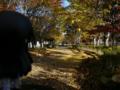 [フィギュア][*Season03:秋][GoodSmileCompany][ねんどろいど][けいおん!]グッドスマイルカンパニー ねんどろいど 秋山澪 カットNo.007