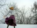 [フィギュア][*Season04:冬][ALTER][TYPE-MOON][月姫][MELTY BLOOD]アルター アルクェイド・ブリュンスタッド カットNo.007