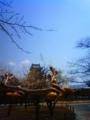 [はてなハイク][風景・景観][花][桜]松本城にて(長野県松本市)