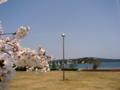 [風景・景観][海][空][桜]道の駅のとじま(石川県七尾市)