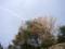 ツインブリッジのとへの道中(石川県七尾市)