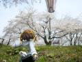 [フィギュア][*Season01:春][GoodSmileCompany][D.C. ~ダ・カーポ~]朝倉音夢 カットNo.016